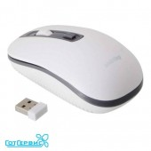 Мышь беспроводная SmartBuy ONE 359G-K бело/серая